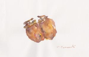 好物の干し柿     4号大     水彩     2015